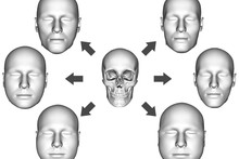 Multiple facial variants from a given skull
